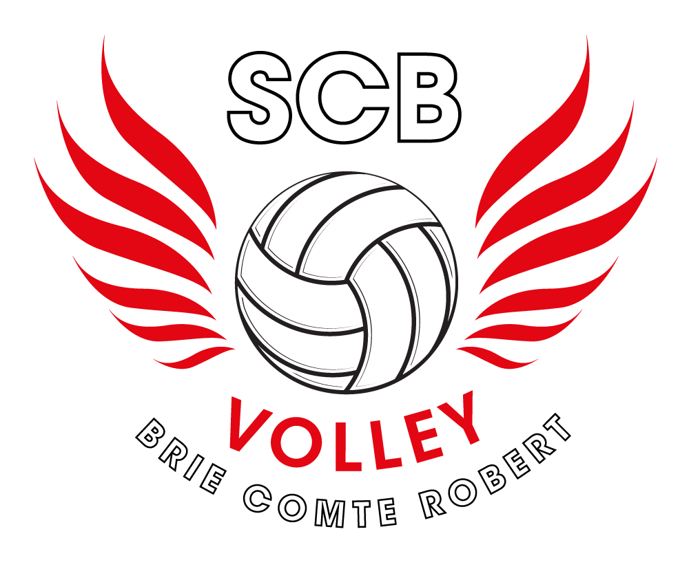 Logo SPORTING CLUB BRIARD VOLLEY BALL